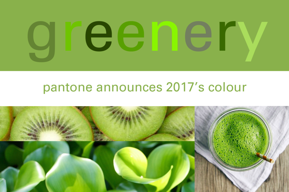 green, pantone, greenery, color of the year, color of the year 2017