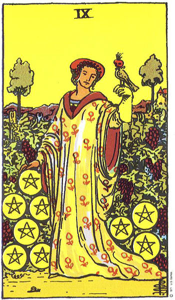 nine of pentacles, tarot, susan miller, rider waite, the wild unknown