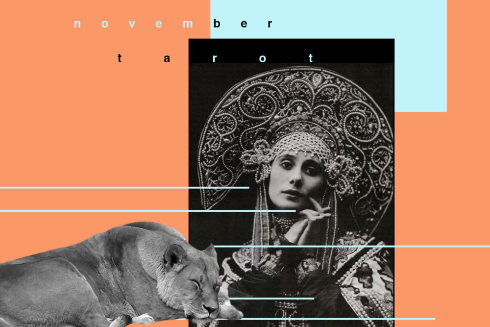 november tarot, strength, nine of pentacles, susan miller, tarot, astrology, rider waite, the kitten life