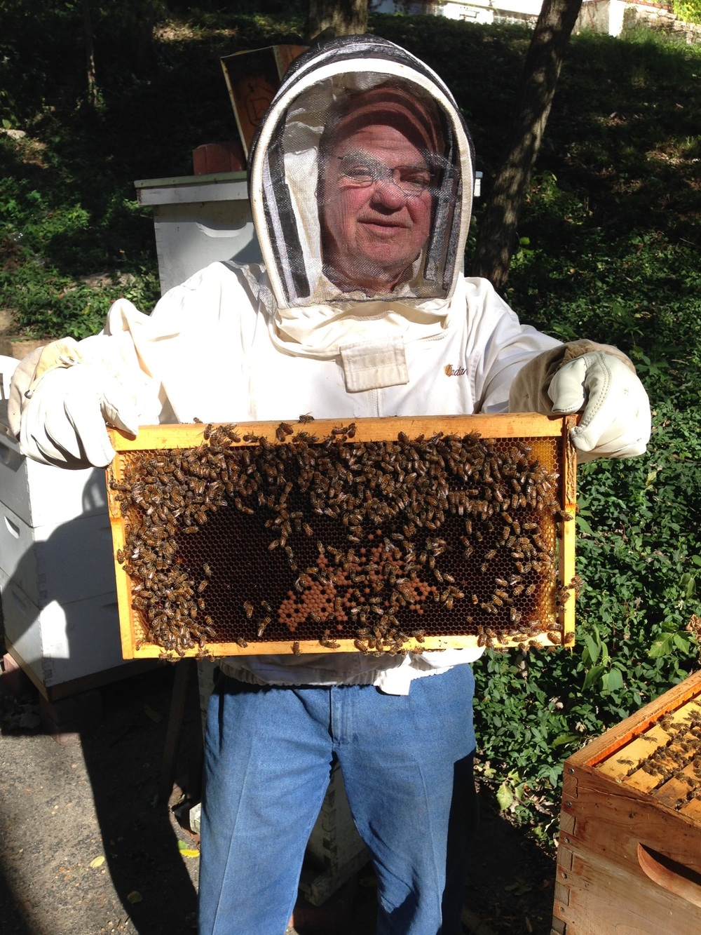 Beekeeping Cincinnati Ohio