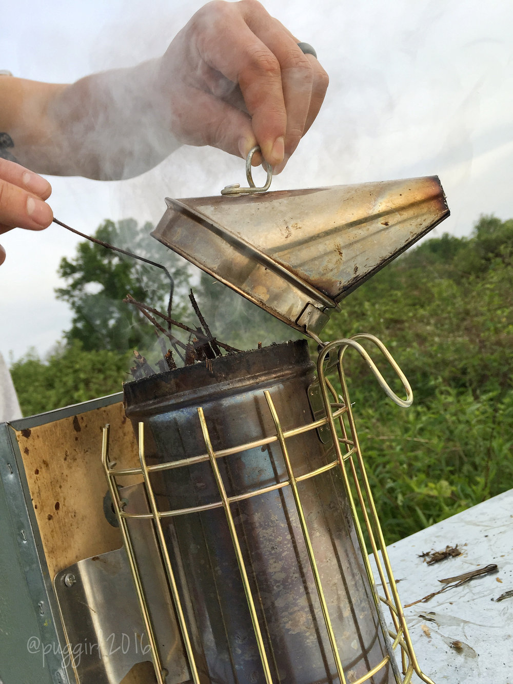 bee smoker close up.jpg