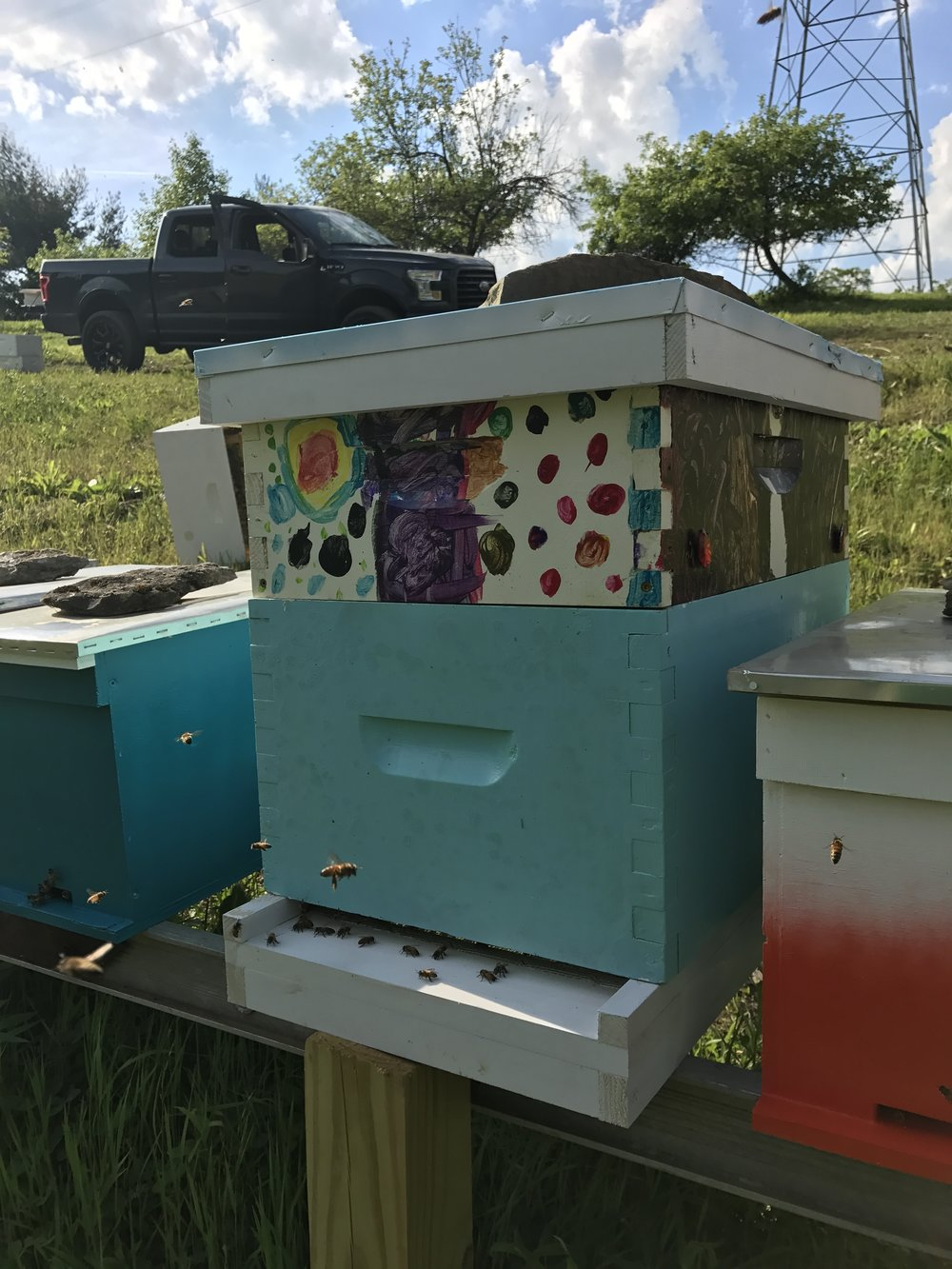 Host A Hive Gaiser Bee Co Cincinnati Ohio