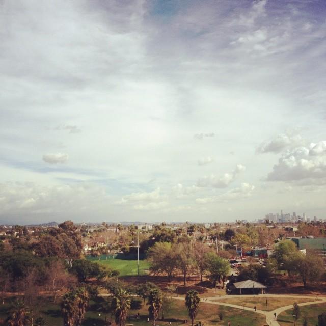 It's a crisp, beautiful day in L.A. #crisp