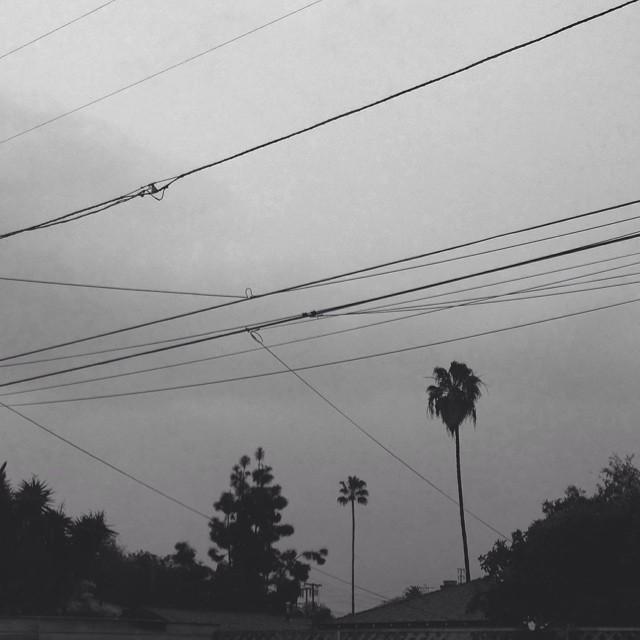 Good morning rainy L.A.