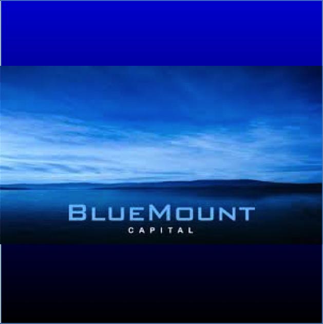Logo BlueMount Square.png