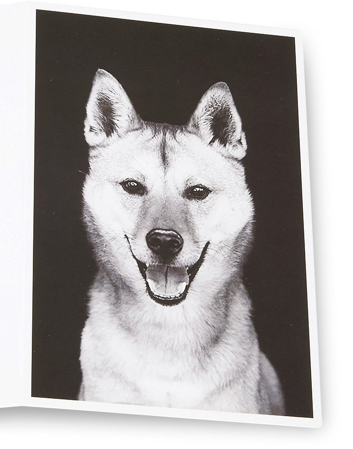 Enclosed greeting card just dogs gourmet m4hsunfo Image collections