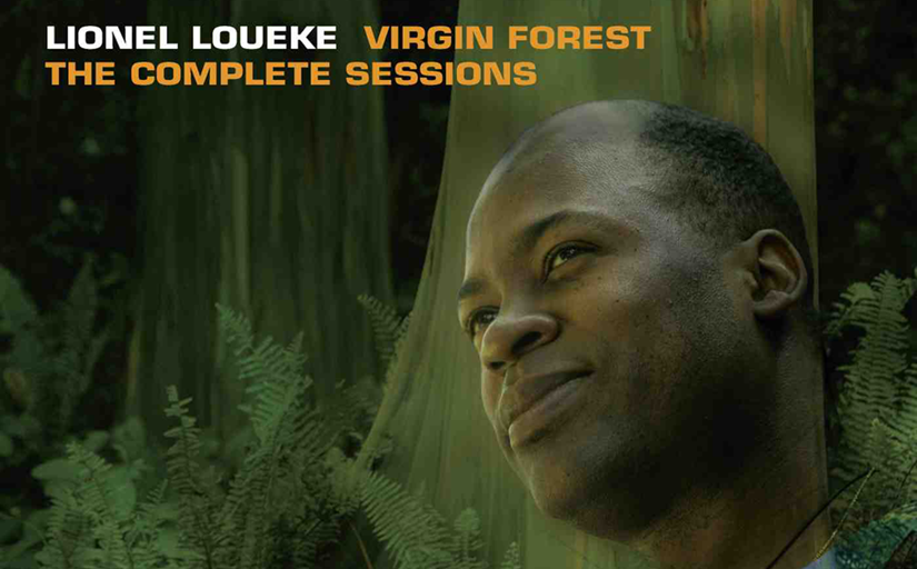 virgin-forest-feature.png