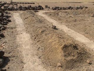 Ngolokouna2013(1).jpg