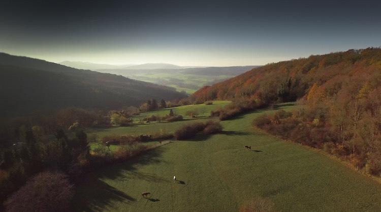 Coeur de Sundgau, les Alentours.jpg