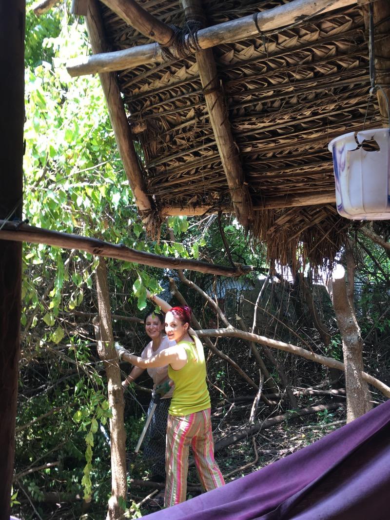 După mic-dejun urmează partea a doua de muncă la pădure. Stai, ziceai împadurire? Noi am avut sarcina de a tăia crengile din jurul cabanei de oaspeți pentru a preveni înmulțirea albinelor și a altor insecte mai puțin prietenoase. Maceta a devenit destul de rapid cel mai de încredere prieten din Sadhana Forest.