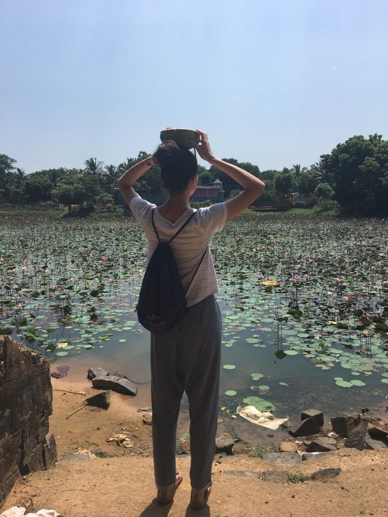 Lacul de lotusi din Kuilapalayam