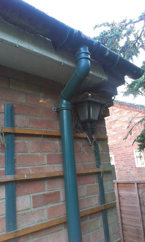 Canary Guttering Services in Norwich, Norfolk – Gutter, Fascia, Soffit, Bargeboard and Cladding Repairs in Norwich, Norfolk