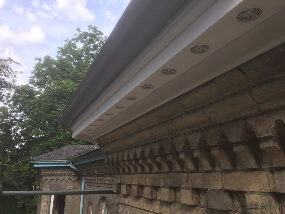 After 2 (Roofline and Rainwater).JPG