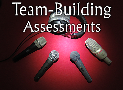 Provide a mirror to the team by using various assessments to determine the state of the team and develop a roadmap for growth and development.