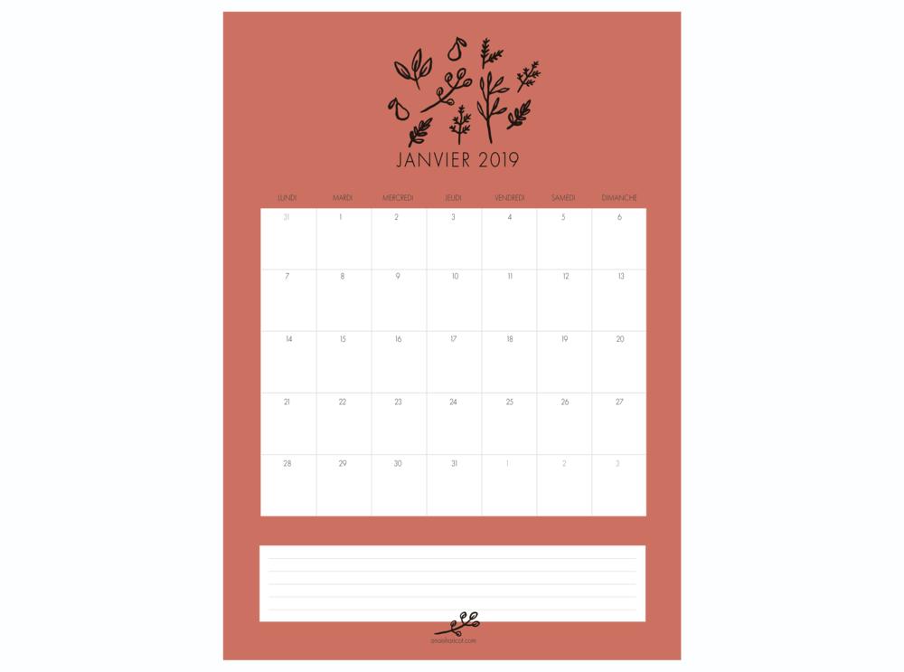 calendrier janvier 2019 MISE EN SITUATION.png