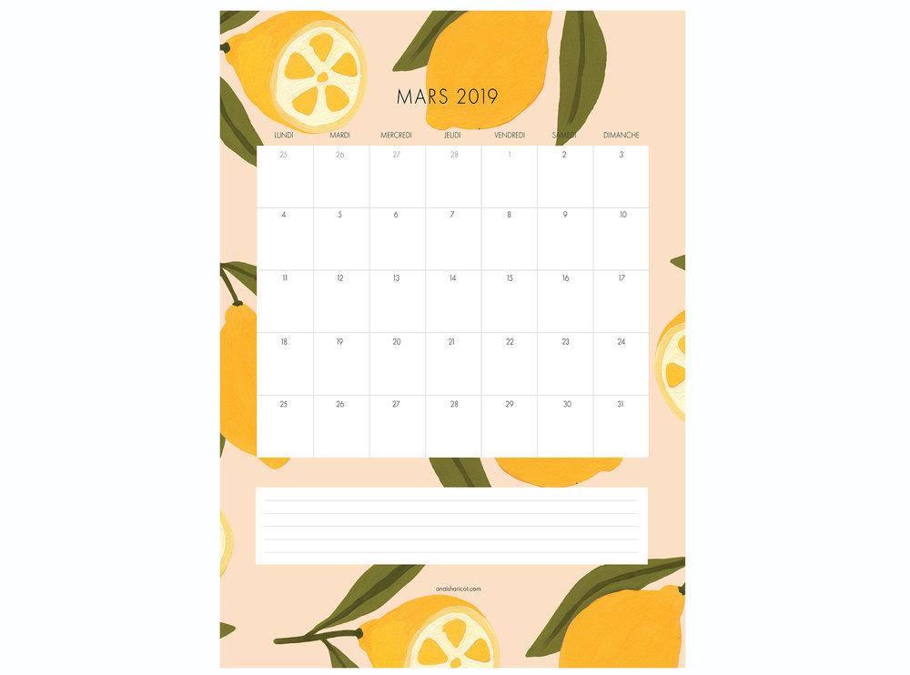 calendrier MARS 2019 MISE EN SITUATION.jpg