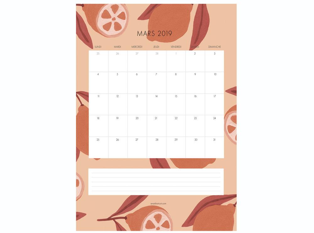 calendrier mars rose 2019 MISE EN SITUATION.jpg