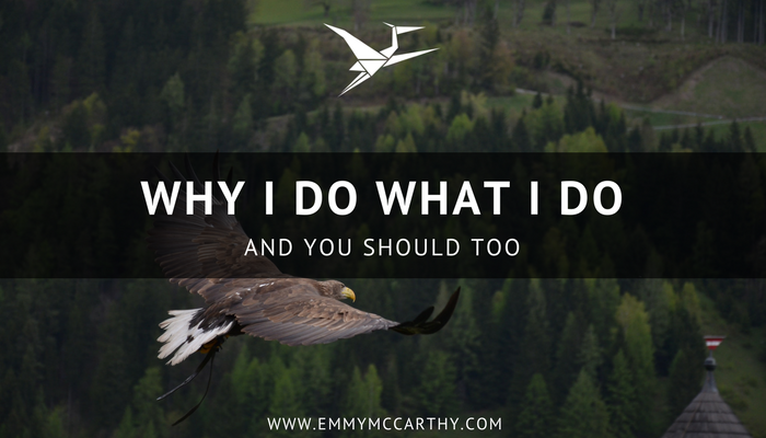 why I do what I do and you should too by Emmy McCarthy