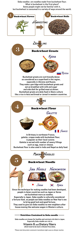 ★★What-is-Buckwheat-.jpg