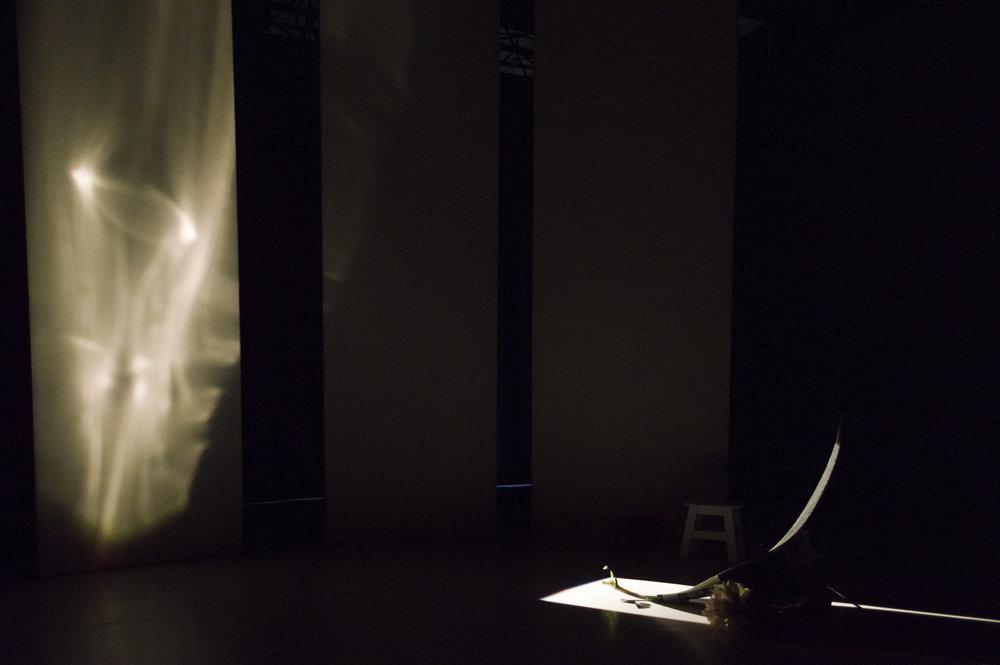 回聲 II: 光 - 第二個作品,是關於光的反射。一個震動喇叭附著於塑膠鏡之下,並利用強烈的劇場光源投於鏡上,讓光影反射於白色布幕上。而光影的反射會隨著喇叭接受的聲音而改變,與音樂互動。Media: one speaker, plastic mirror, wood, profile light