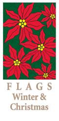 Flags_Winter_01_Lantz.jpg