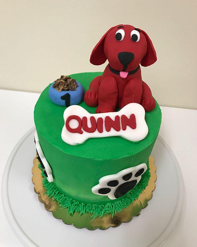 Because all birthdays matter! #belatedbirthdaypost #quinnthebigreddog