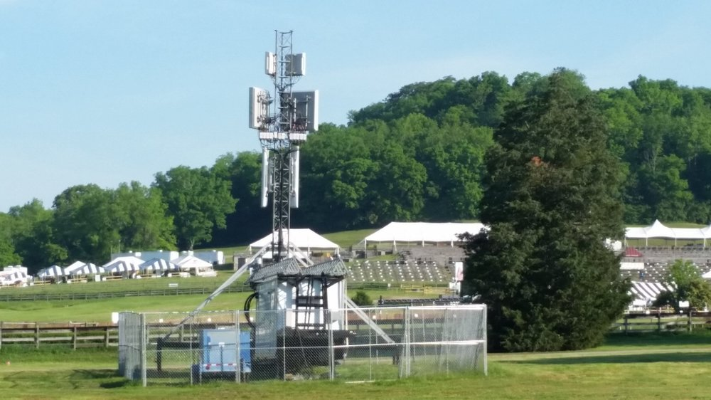 AT&T Mega Cow Spotted Next to Thoroughbreds at Percy Warner Park