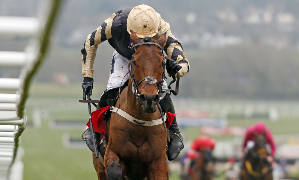 Nichols Canyon races to the finish at the Stayers' Hurdle at Cheltenham Festival in March 2017. Photo by Steven Cargill