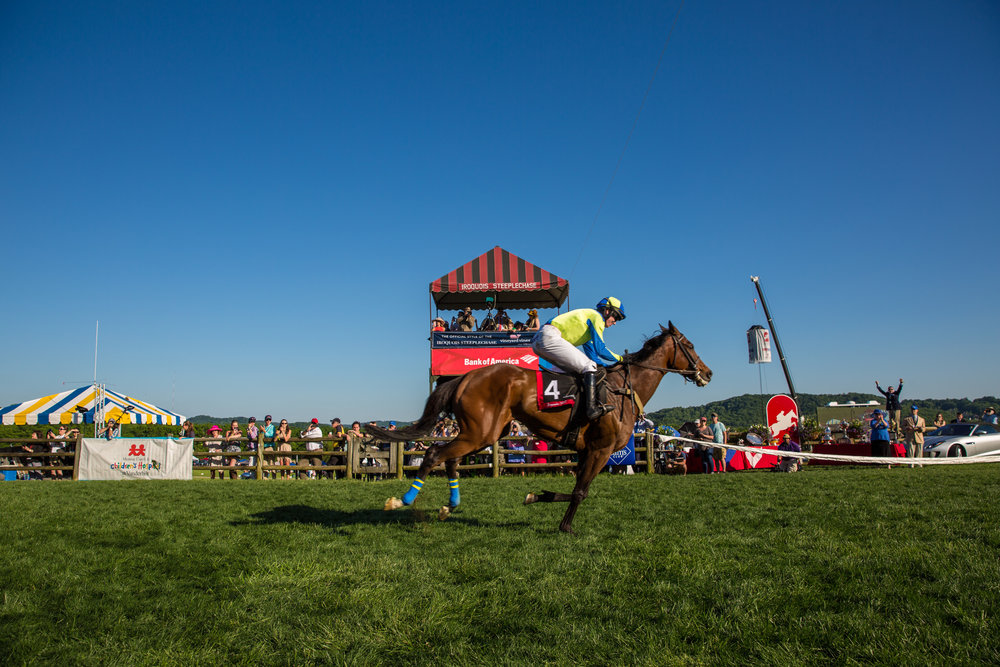 Scorpiancer crosses the finish line first in the Calvin Houghland Iroquois on May 13, 2017. Photo by Brad Moore.