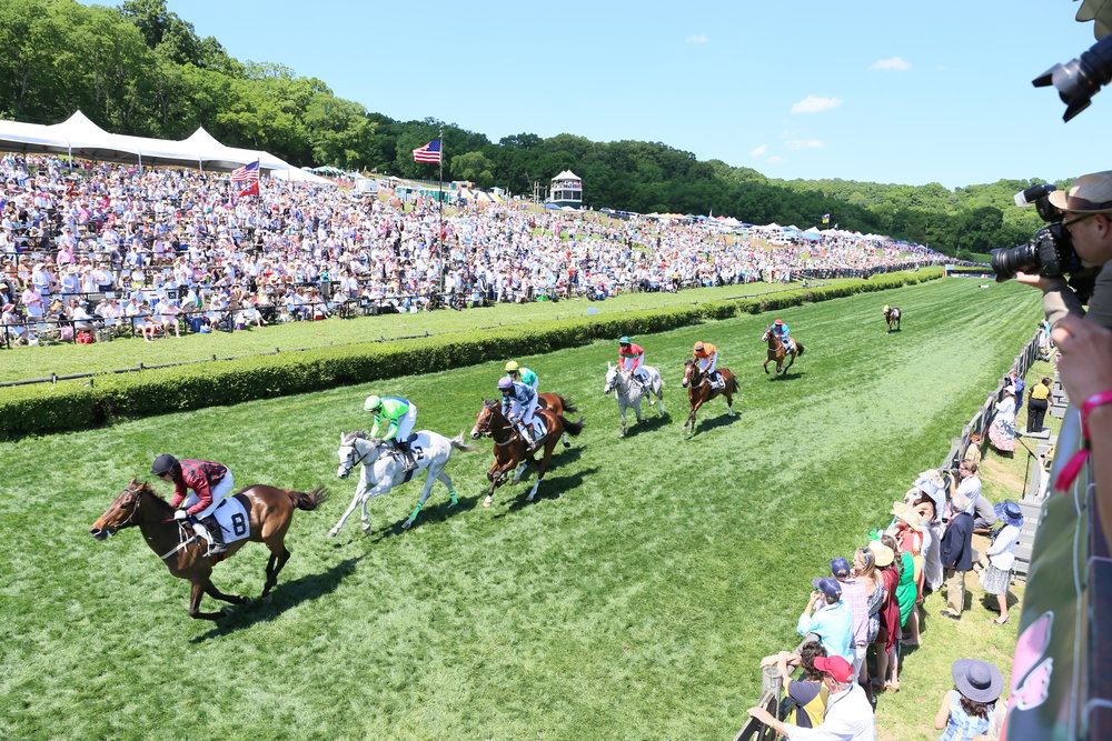 The iroquois steeplechase for Steeple chase
