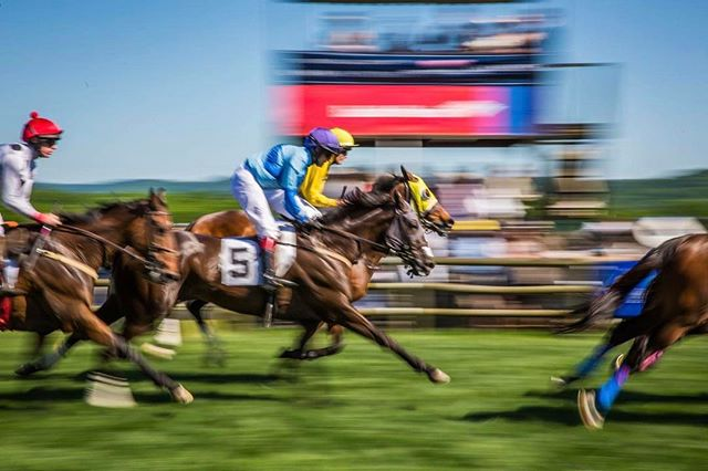 #DidYouKnow that the average weight and speed of a steeplechasing Thoroughbred is 1,000 lbs. and 30 mph, respectively? We love this cool action 📸 by Brad Moore!