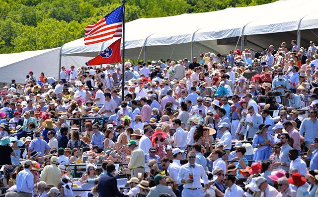 Get the #SteeplechaseScoop! Did you know Iroquois Steeplechase draws an average crowd of 25,000? #jumpracing #TNSteeplechase