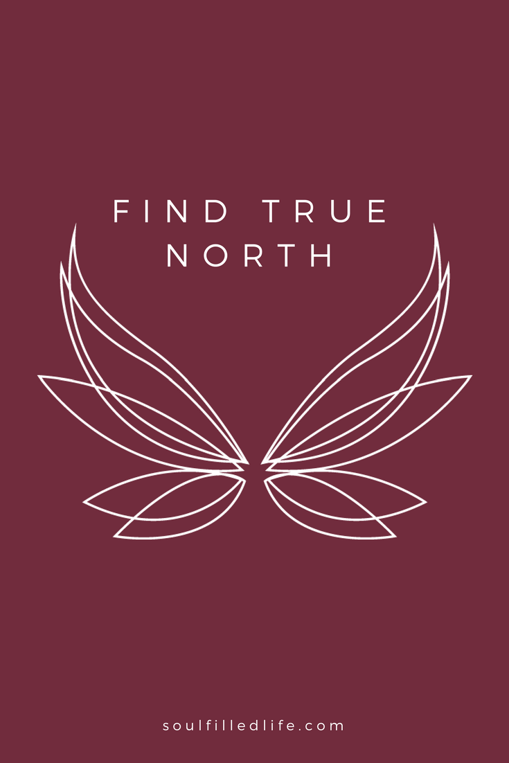 Find True North