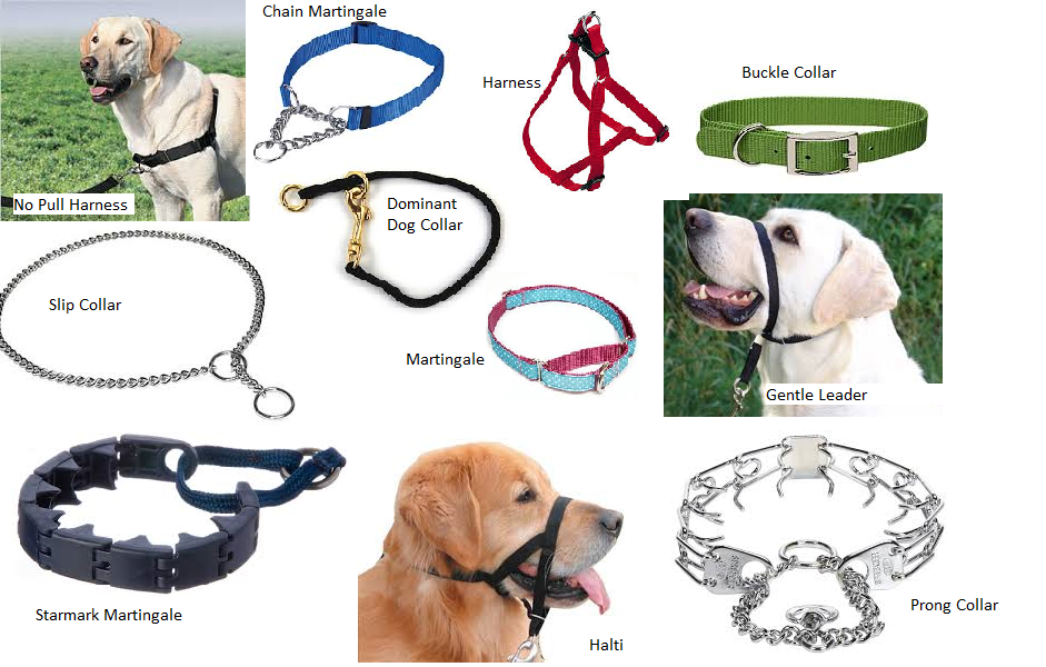 collar-collage.png