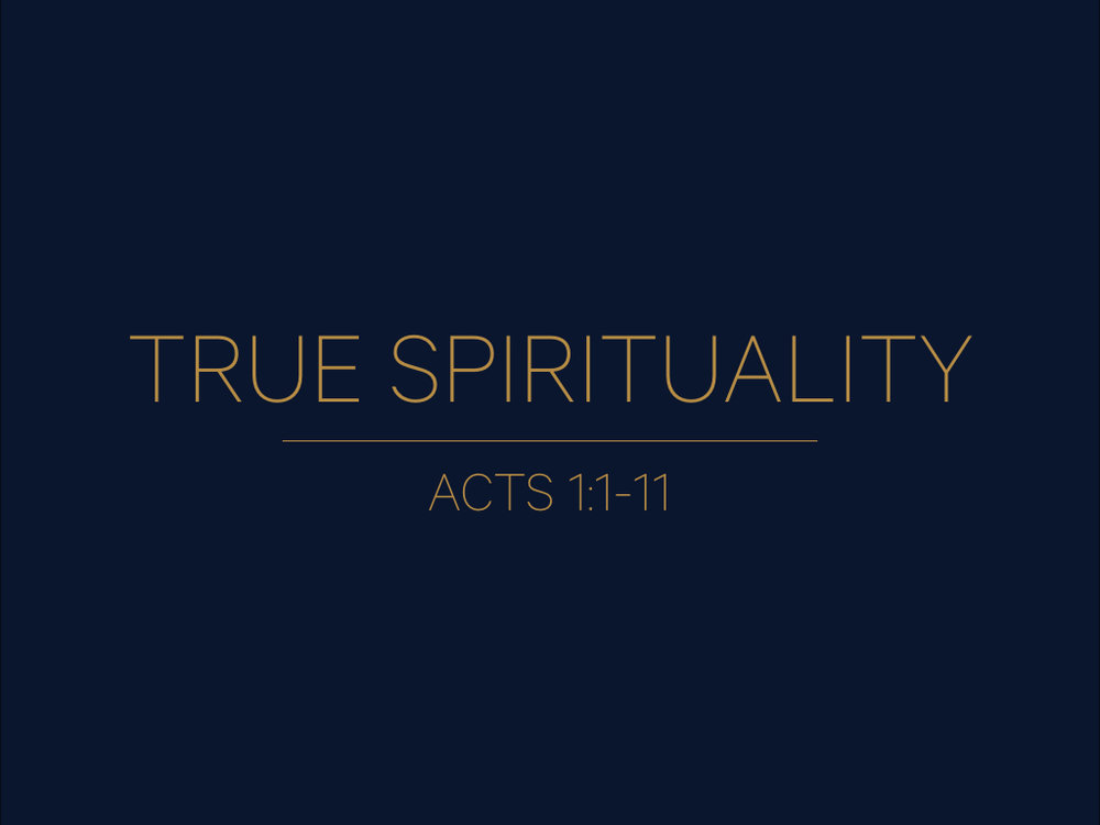 TRUE SPIRITUALITY.001.jpeg