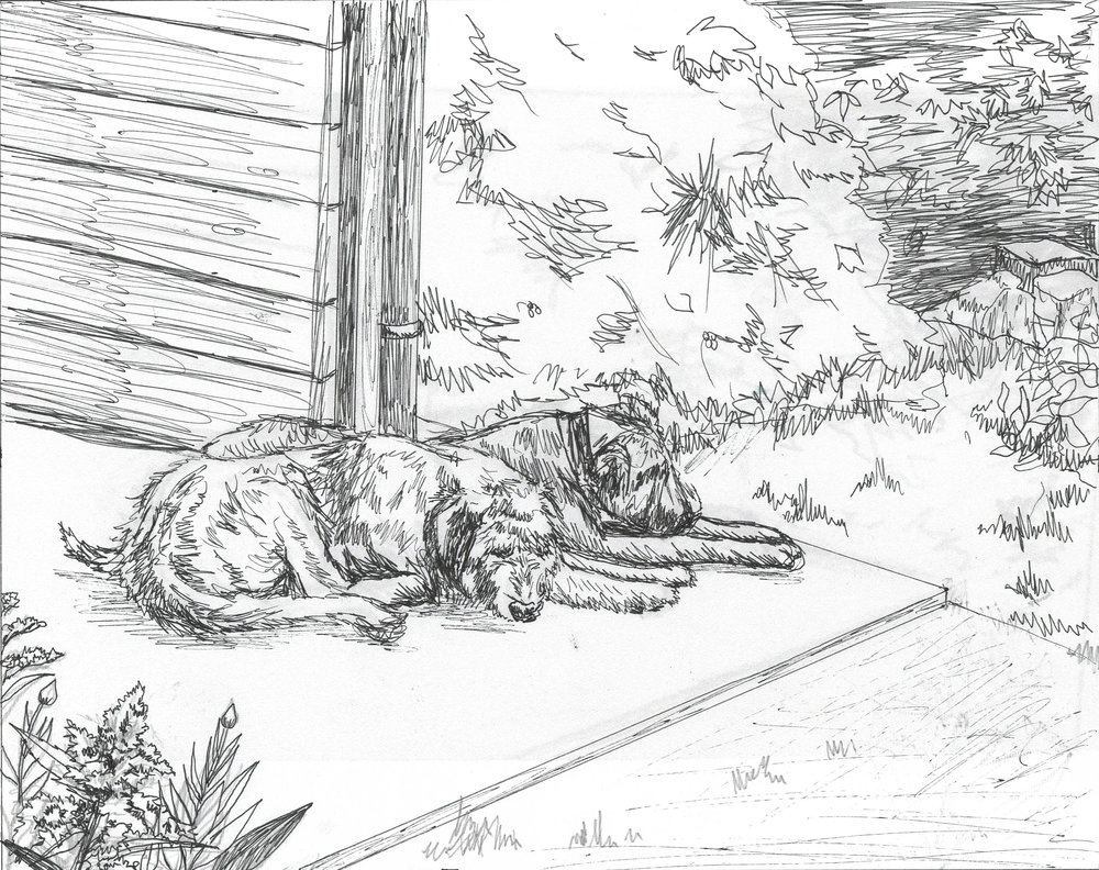 Irish Wolfhounds Sketch