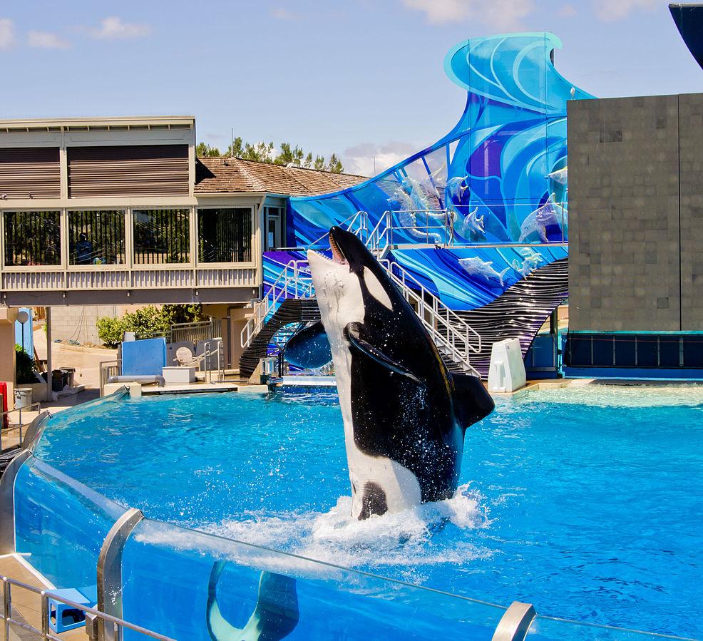 SeaWorld San Diego/Antoine Taveneaux/Creative Commons Attribution-Share Alike 3.0 Unported