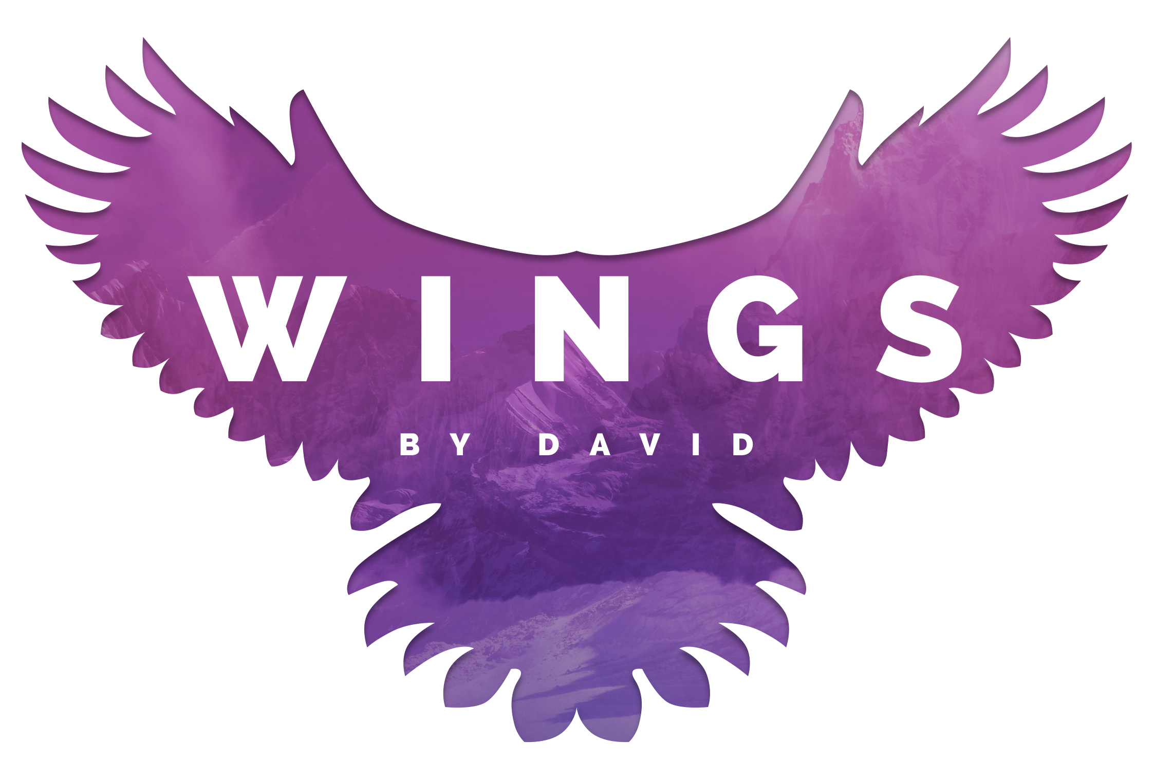 WINGS by David