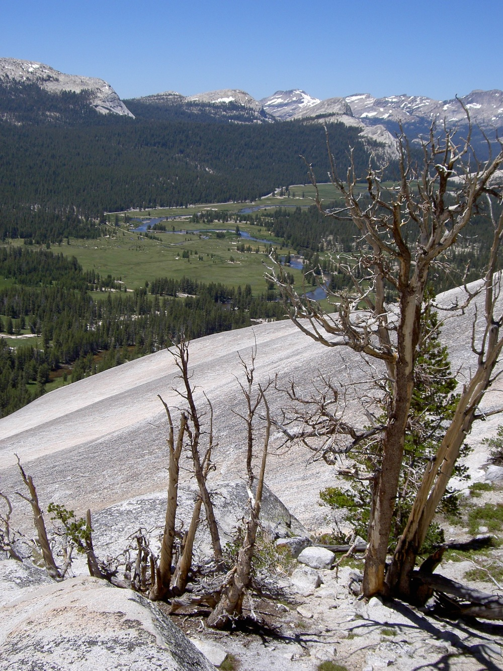 Tuolumne Meadow viewed from Lembert Dome.