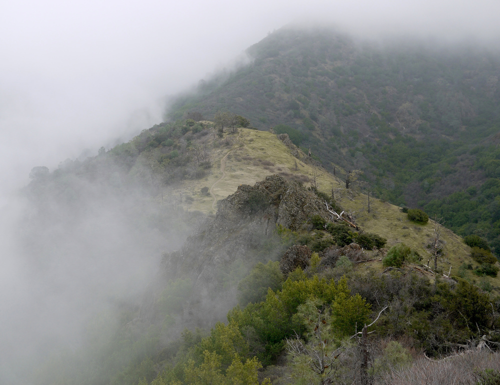 Bald Ridge, Mt. Diablo State Park.