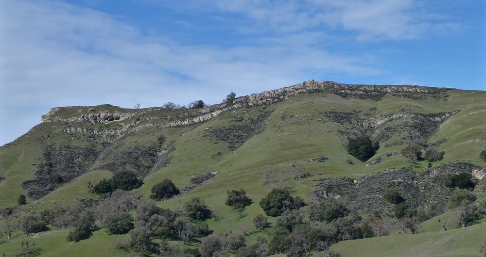 Flag Hill's face features sandstone outcrops that geologists consider simply fossiliferous.