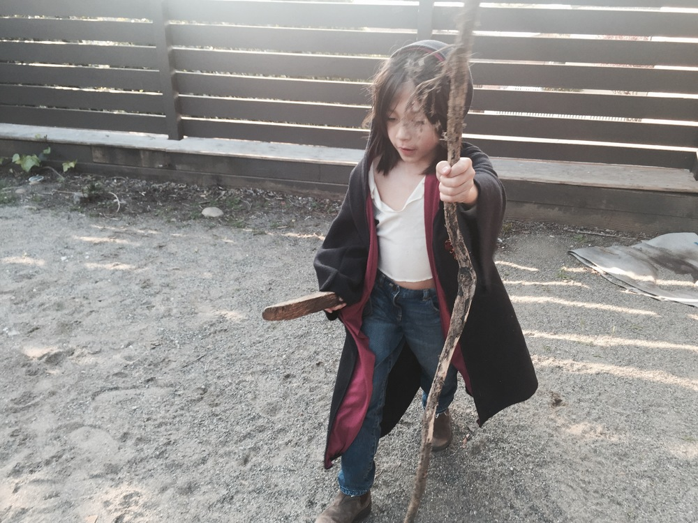 Marcas as pirate-Harry Potter with Dumbledore's staff