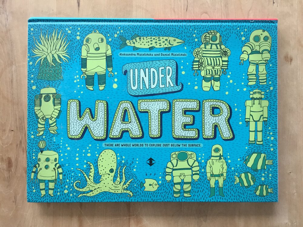 Under Water, Under Earth   by Aleksandra Mizielinska & Daniel Mizielinkski, published by Big Picture Press, an imprint of  Candlewick Press .