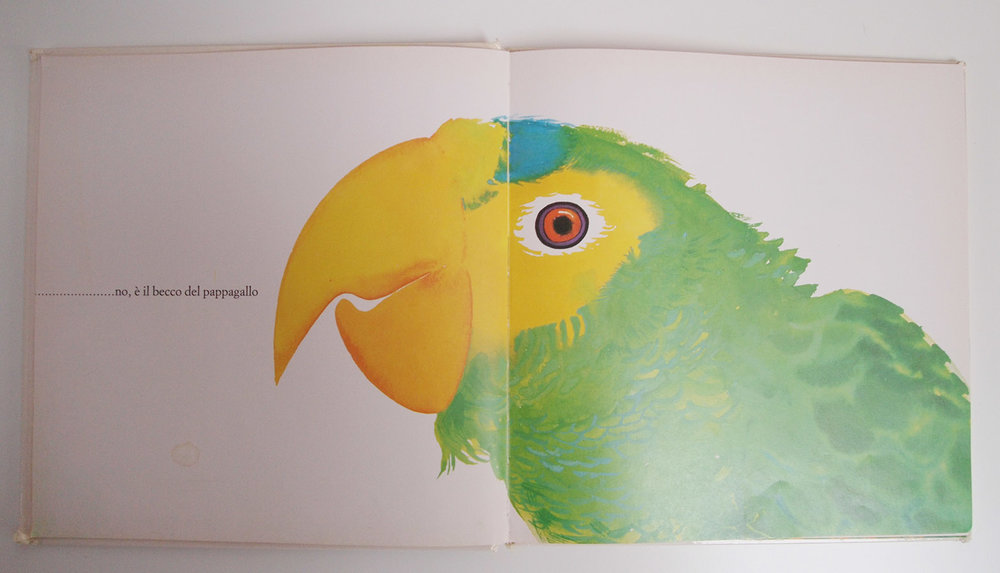 Sembra Questo Sembra Quello  by   Enrica Maria Agostinelli. Translation: ...... No, it's the beak of the parrot