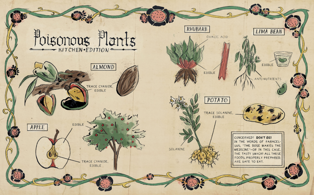 """With my piece, I wanted to illustrate some things you might find in your kitchen that you might not want to eat. I chose to do this in a style like a medieval herbal manuscript."" — Nina Gookin  @NinaGookin"