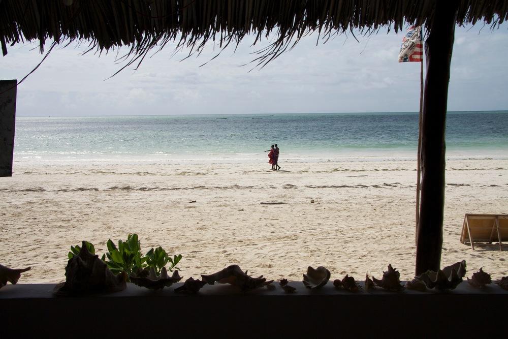 Zanzibar Study Abroad