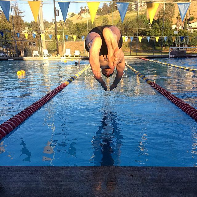Dive in!  #swim #swimmer #dive #fitness #workout #goals #training #transformationtuesday #noexcuses #justdoit #getoutside #fitnessaddict #pool #work
