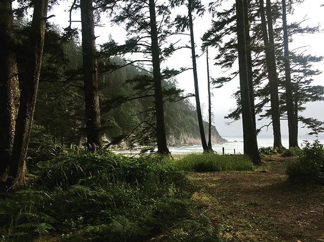Magical w/ @nikoeliana  #oregon #seaside #pacificnorthwest #beach #surf #trees #beautiful #nature