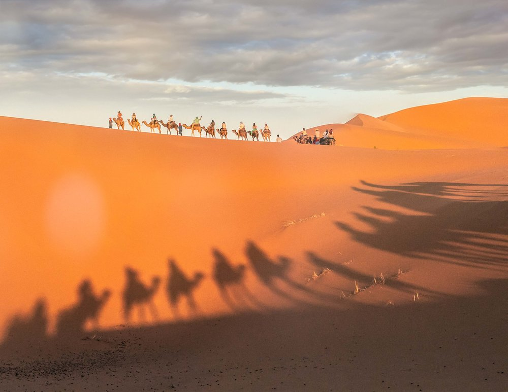 Our group out on a sunset camel ride