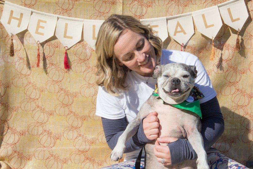 Katie the cancer surviving pug and her mom